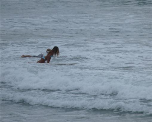 surferg1